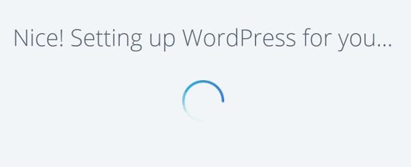 Bluehost WordPress Setup