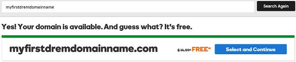 GoDaddy Domain Name Selection
